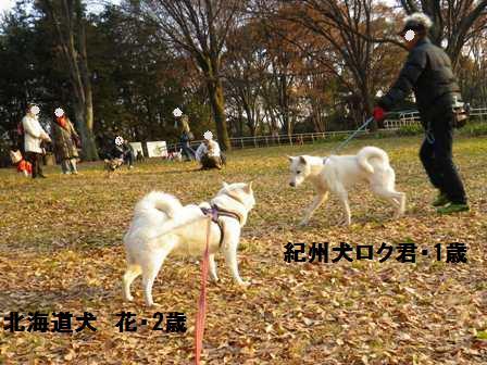12.21代々木お散歩会11