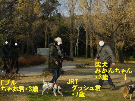 12.21代々木お散歩会12