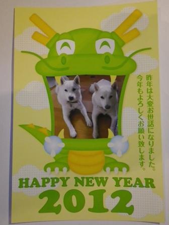 2012年の年賀状