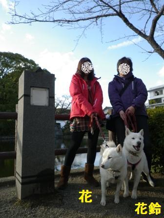 2012.1.3小田原で