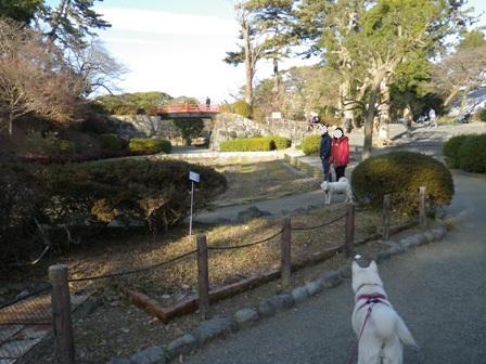 2012.1.3小田原城址公園3