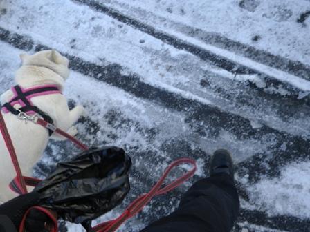 2012.1.24雪が降った翌日2
