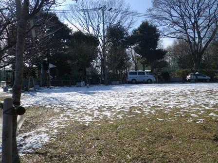 2012.1.25今日の雪1