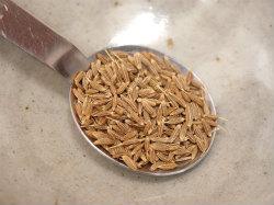 砂肝のクミンシード炒め08