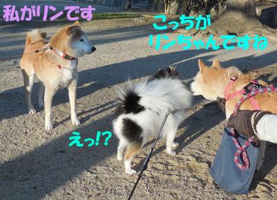 DSCN3826_2.jpg