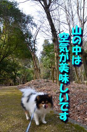 DSC_5024.jpg