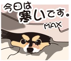 __tn_samuiMAX.jpg