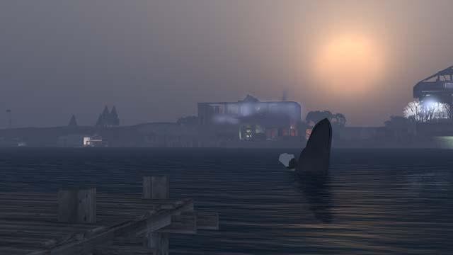 夜明けのサトウクジラ