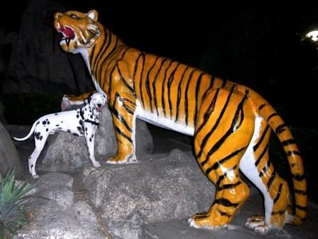 ダルメシアン アル と 虎