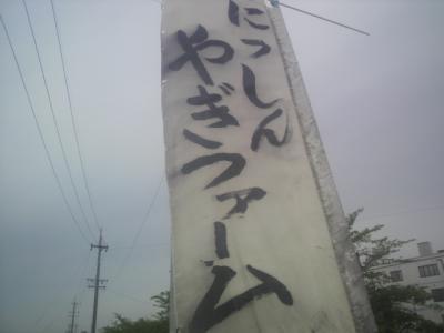 P1001085.jpg
