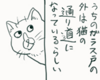 nekomichi02