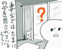nekomichi07