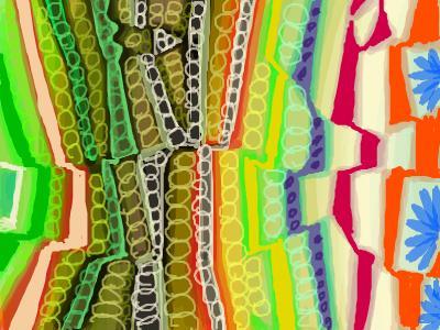 snap_ebulogu_201112233848.jpg