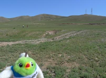 広い草原が広がってるよー!!