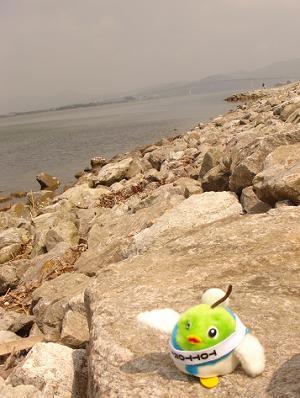 中海とぼく。