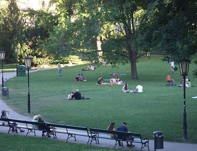 すてきな公園だね。