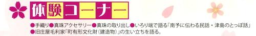 img032 - コピー (2)