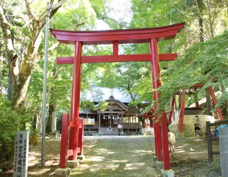 稲荷山公園1