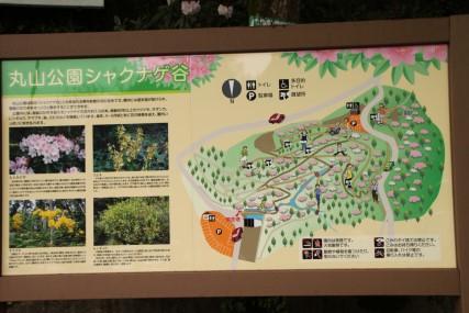 丸山公園 案内図