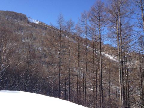 鹿沢2012_12