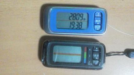 P1000319.jpg