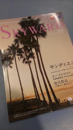 sw1_20131101152515954.jpg