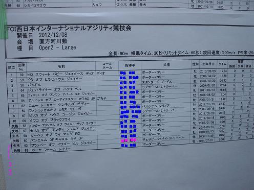20121208ビギナー 2 コピー