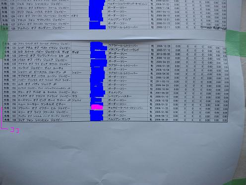 20121208ジャンピング1度コピー