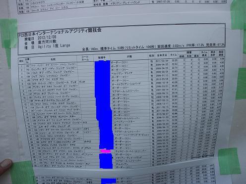 20121208アジリティー1度コピー