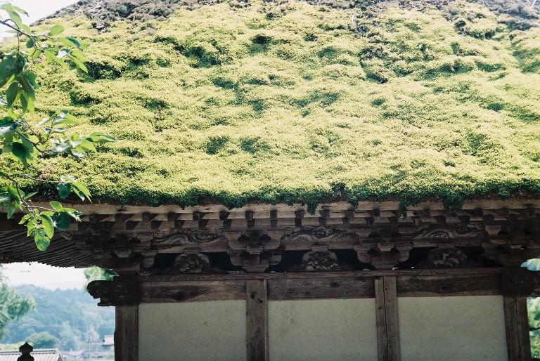 林昌寺の山門