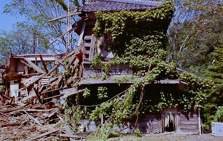 鳳来寺の廃屋解体が始まる