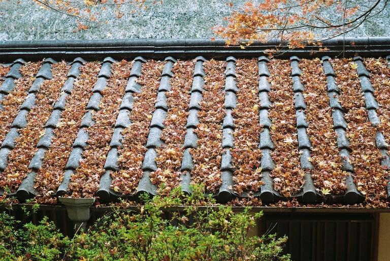 香嵐渓の紅葉-2