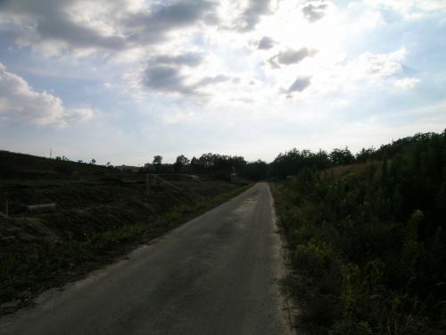 耕作放棄地4