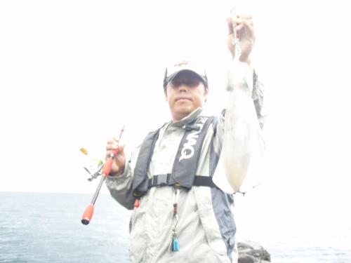 2010.6.27伊豆アオリ1