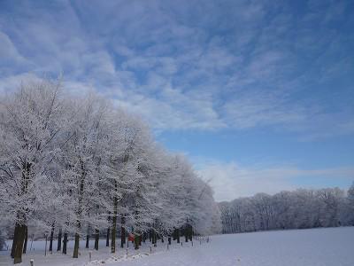 ens_21_Dec_3
