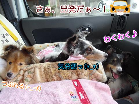 さぁ、出発だぁ~!