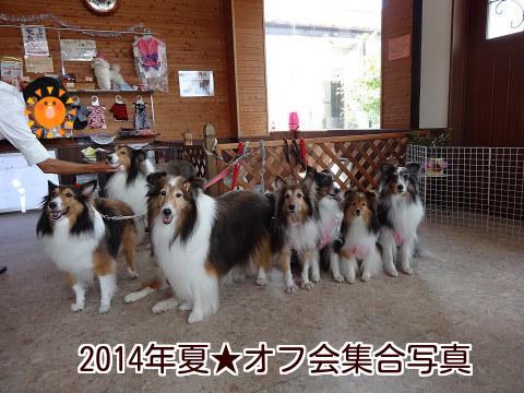 2014年夏★オフ会集合写真