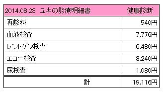 20140823 診療明細書【ユキ】