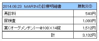 20140823 診療明細書【MARIN】