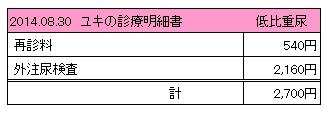 20140830 診療明細書【ユキ】
