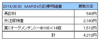 20140830 診療明細書【MARIN】