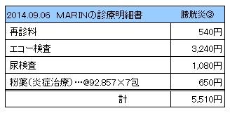 20140906 診療明細書【MARIN】