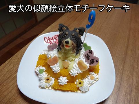 愛犬の似顔絵立体モチーフケーキ♪わん1頭のせ【ユキ】