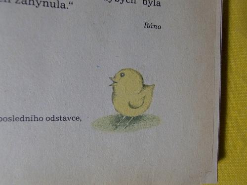 CIMG3839.jpg