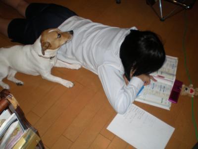 仁+028_convert_20100304221836