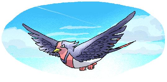 そーらを自由に(ry、って俺、鳥じゃん!