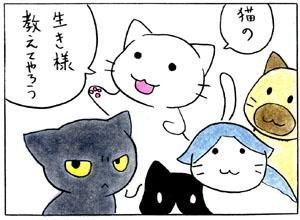 太郎さんと仲間たち