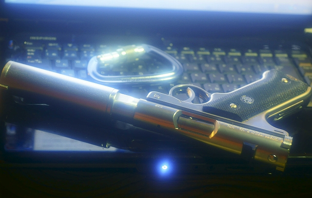 _DSC5231_20110111201148.jpg
