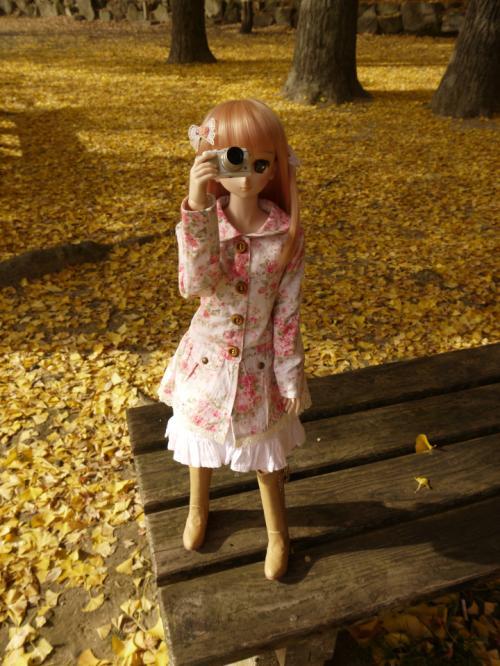 ゆゆぽさんちの姫乃ちゃんのリボン1_convert_20121206232916
