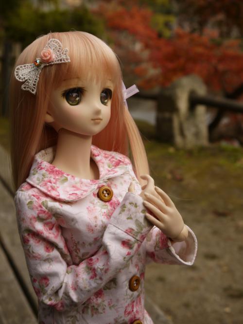 ゆゆぽさんちの姫乃ちゃんのリボン3_convert_20121206232941